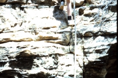 ian-paterson-ptortise-aged-12-learning-to-abseil-sydney-9d59e227f50b2acd29bfa7a6abd5c8a5de8fbbe6