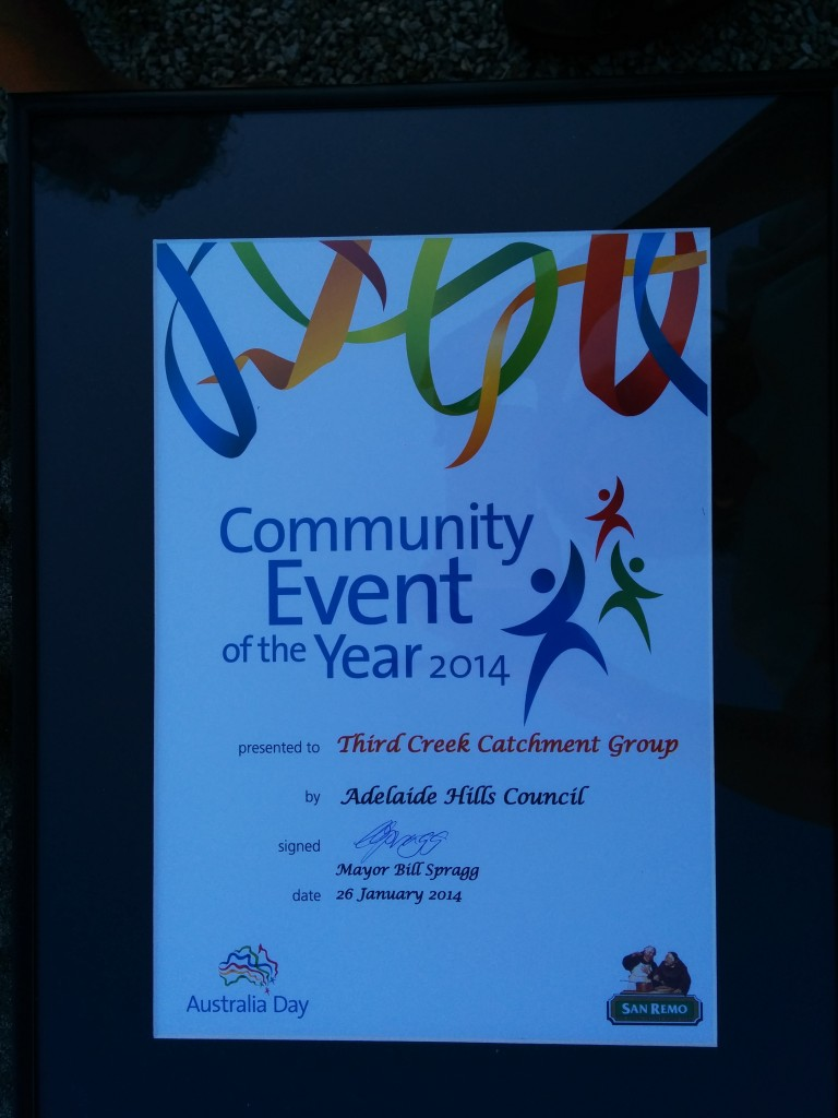 Community Event of the Year award